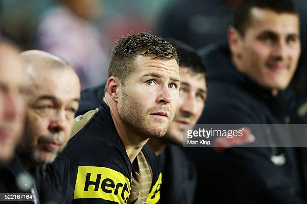 Trent Merrin of the Panthers looks on from the bench during the round seven NRL match between the Sydney Roosters and the Penrith Panthers at Allianz...