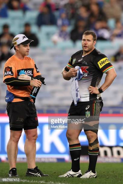 Trent Merrin of the Panthers receives attention from the trainer during the round 13 NRL match between the Canterbury Bulldogs and the Penrith...