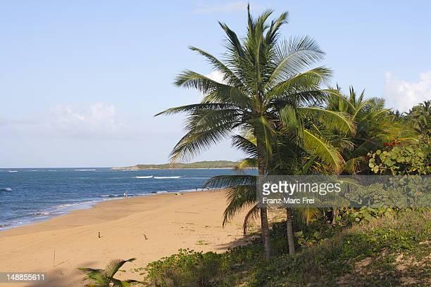 tres palmitas beach. - três pessoas stock pictures, royalty-free photos & images