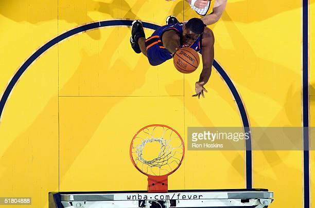 Trevor Ariza of the New York Knicks drives for a layup against the Indiana Pacers November 13 2004 at Conseco Fieldhouse in Indianapolis Indiana The...