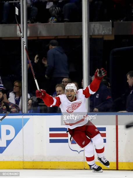 Trevor Daley of the Detroit Red Wings celebrates his game winning goal in overtime against the New York Rangers on February 25 2018 at Madison Square...