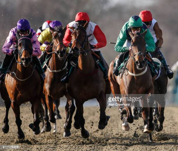 Trevor Whelan riding Forbidden Love makes all to win The EBF Mares' Intermediate Open NH Flat Race at Lingfield Park racecourse on January 30 2018 in...