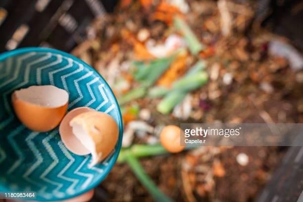 tri - compostage des déchets - humus photos et images de collection