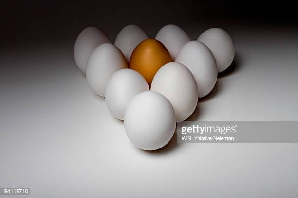 Triangle of white eggs with a brown egg