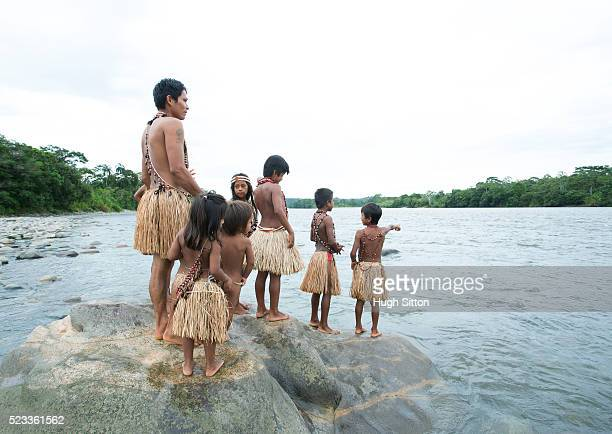tribal children (4-5, 6-7, 8-9, 13-15) from amazonian rainforest, ecuador - hugh sitton stock pictures, royalty-free photos & images