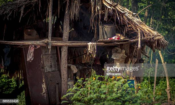 Tribal house in the rainforest