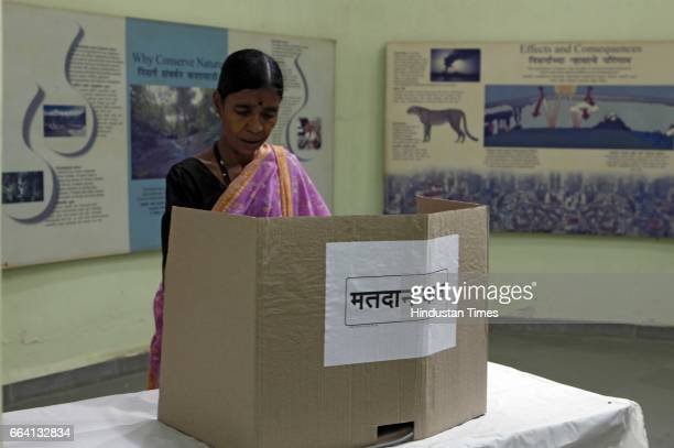 A tribal lady cast her vote for BMC elections at Sanjay Gandhi National Park Exhibition centre