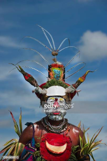 Tribal performer Western Highlands Papua New Guinea performing at a Singsing Hagen Show Western Highlands Papua New Guinea