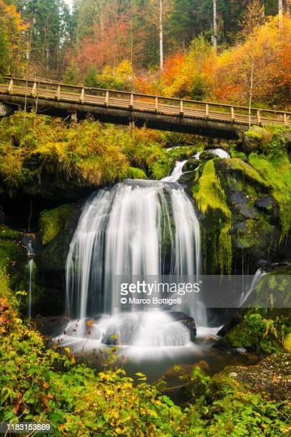 triberg waterfalls, black forest, germany - nationaal monument beroemde plaats stockfoto's en -beelden