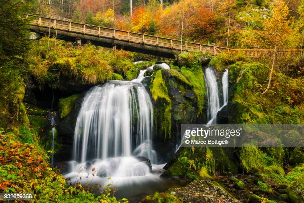 triberg waterfalls, germany. - baden württemberg stock pictures, royalty-free photos & images