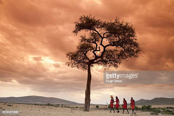 tribespeople under tree - hugh sitton stock-fotos und bilder
