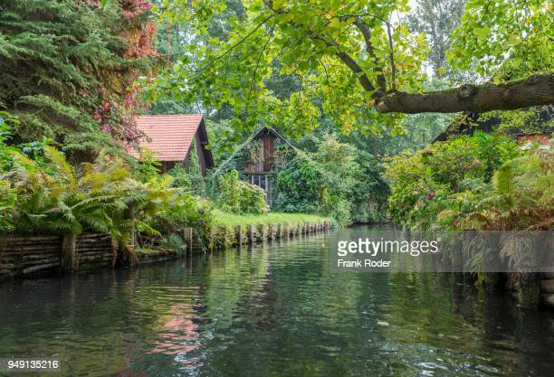 tributary of the spree river with small houses, luebbenau, spreewald, brandenburg, germany - spreewald stock pictures, royalty-free photos & images