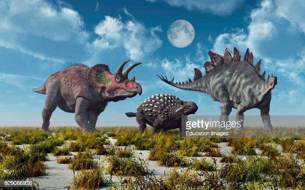 Triceratops Ankylosaurus Stegosaurus Herbivore Dinosaurs From The Jurassic Cretaceous Eras Of Time