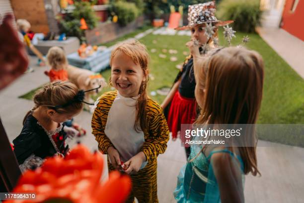 trick or treat? - pumpkin cats stock pictures, royalty-free photos & images