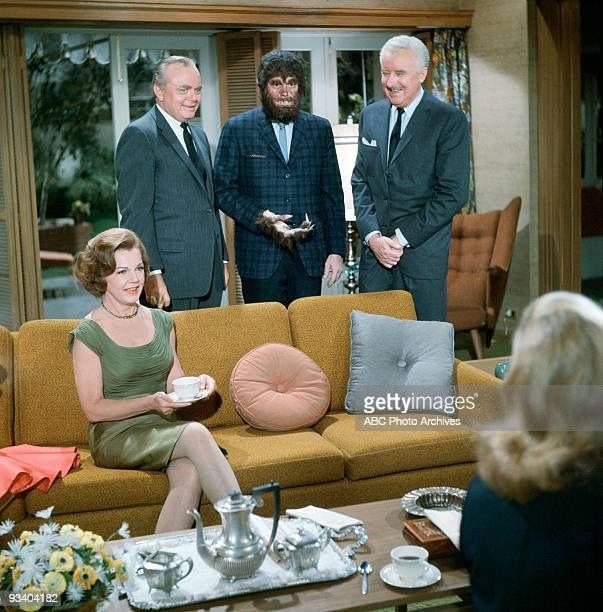 BEWITCHED 'Trick or Treat' Season Two 10/28/65 Endora turned Darrin into a werewolf when he refused to let Samantha go to a witches' Halloween...