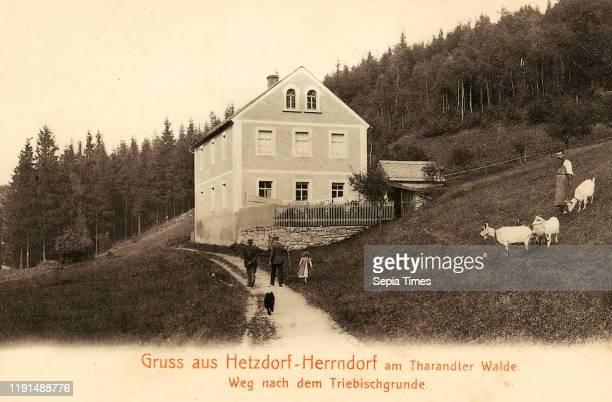 Triebisch, Capra Landkreis Mittelsachsen, Herrndorf, Hetzdorf, Weg nach dem Triebischgrunde, Germany.