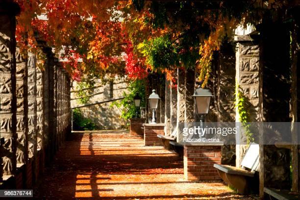 trieste - villa revoltella - fabrizio villa stock pictures, royalty-free photos & images
