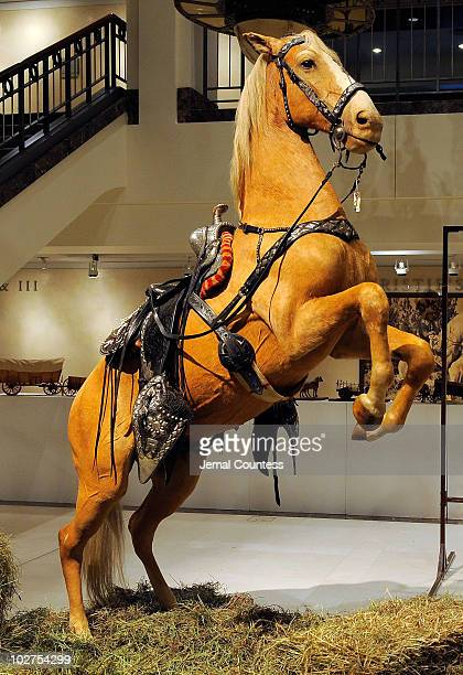 Trigger the famed horse ridden by Roy Rodgers entertainment legend of the rodeo and silver screen is displayed during the Christie's Press Preview...