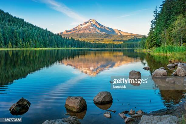 trillium lake and mount hood oregon usa at sunset - mirror lake stock pictures, royalty-free photos & images