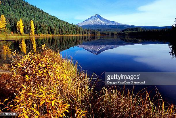 """trillium lake with reflected mount hood, autumn, mount hood national forest"" - dan peak stock photos and pictures"