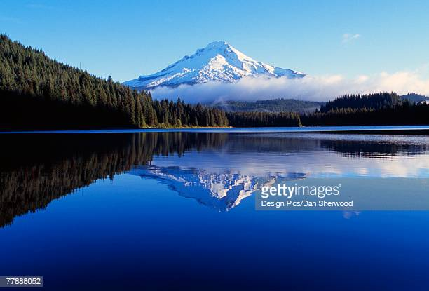 """trillium lake with reflection of mount hood, mount hood national forest"" - dan peak stock photos and pictures"