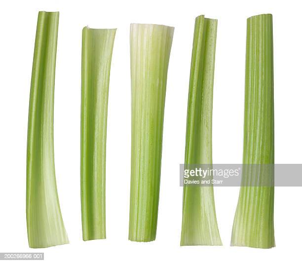 Trimmed celery ribs