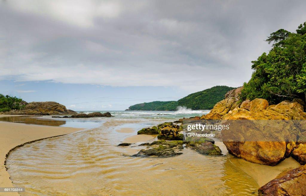 Trindade beach : Stock Photo