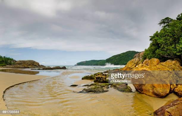 trindade beach - crmacedonio ストックフォトと画像