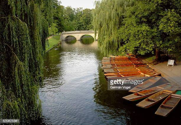 Trinity Punts boat rental and bridge at the Cambridge backs.