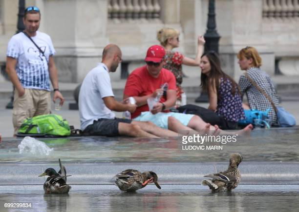 A trio of ducks cool off in a fountain pool near The Louvre Museum in Paris on June 21 as temperatures climb across Europe Europe continued to sizzle...