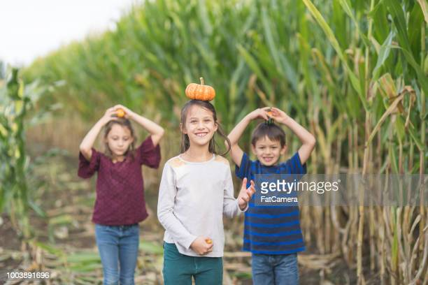 Trio of multiethnic kids at a pumpkin patch
