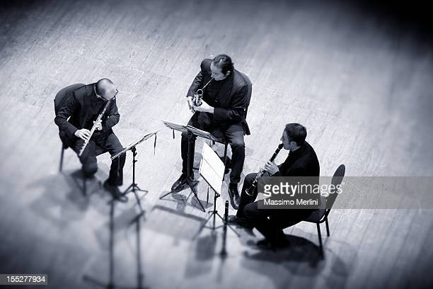 trio - bassoon stock pictures, royalty-free photos & images