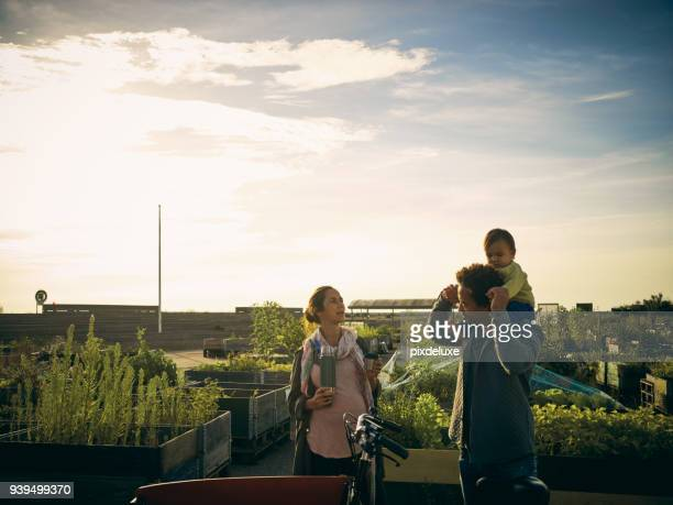 trip to the farmer's market with the family - denmark stock pictures, royalty-free photos & images