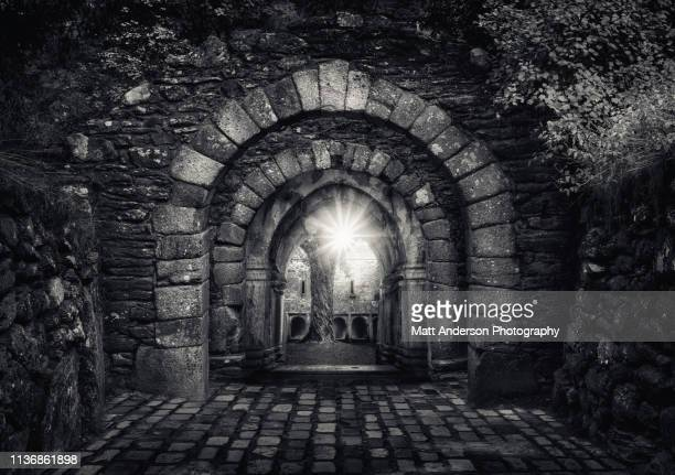 Triple Archway to Muckross Abbey #3