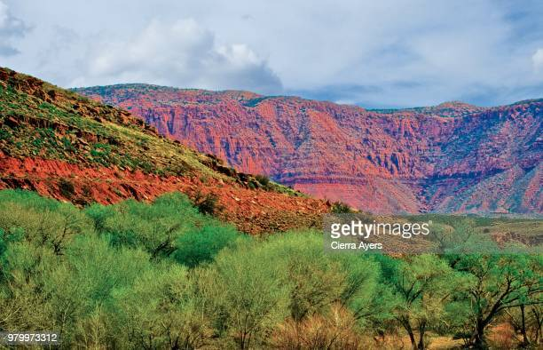 tri-state junction of arizona, utah and nevada mountains offering beautiful views of the slot cantons - artemisia stock pictures, royalty-free photos & images