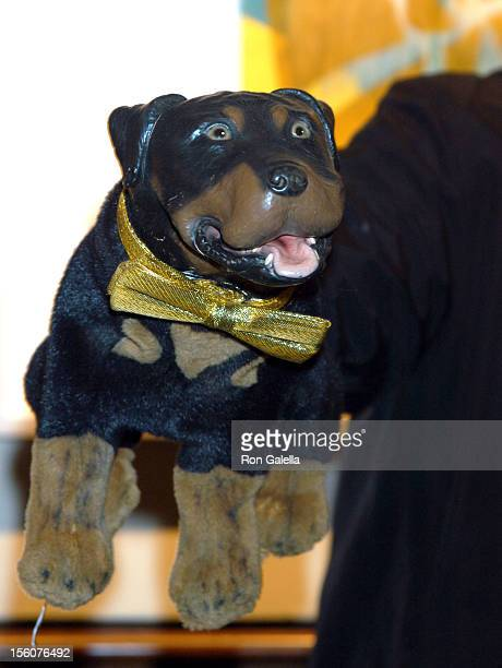 Triumph the insult comic dog during Comedy Tonight A Night of Comedy to Benefit the 92nd Street Y at 92nd Street Y in New York City New York United...