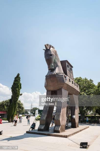 trojan horse in troia national park in turkey - cavallo di troia foto e immagini stock