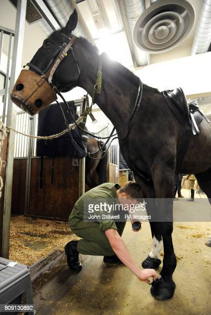 A trooper of the Household Cavalry prepares the hoof of a horse at the Knightsbridge Barracks in central London