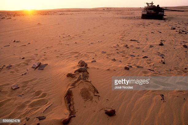 Troops of new President of Chad Idriss Deby floored the Muammar Gaddafi's forces during the OuadiDoum battle