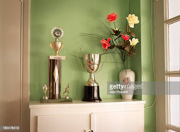 trophies and flowers in green room - trophy stock pictures, royalty-free photos & images