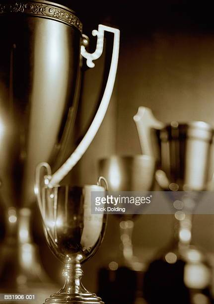 Trophies, close-up (toned B&W)