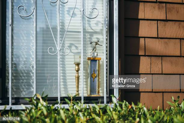 Trophies in window