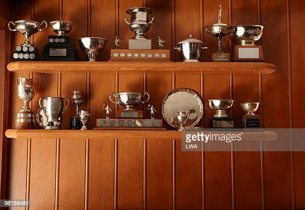 trophies lined up on display shelf - trofeo fotografías e imágenes de stock