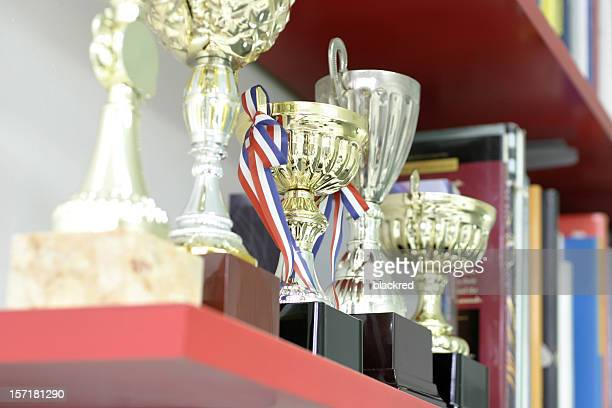 Trophy Display