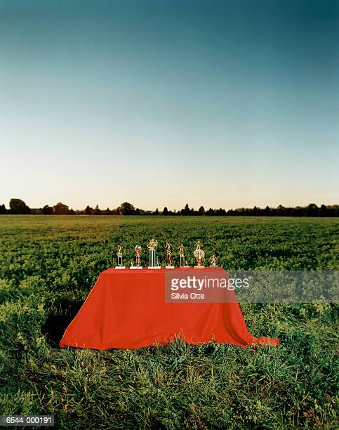 Trophy Table in Field