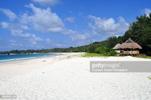 Tropical Beach Andamans