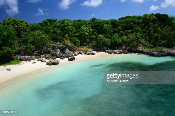 tropical beach, antigua, antigua & barbuda - isla de antigua fotografías e imágenes de stock