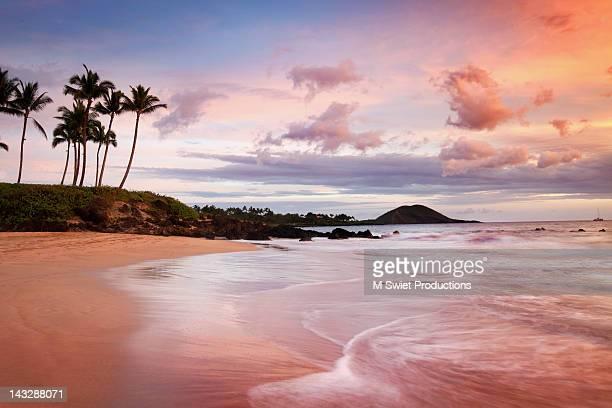 tropical beach at sunset - マウイ島 ストックフォトと画像