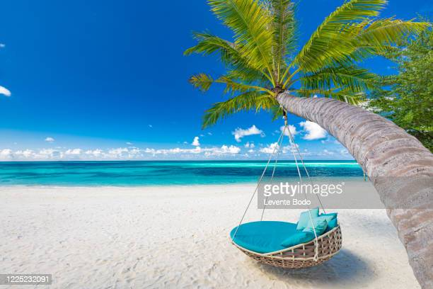 tropical beach background as summer landscape with beach swing or hammock and white sand and calm sea for beach banner. perfect beach scene vacation and summer holiday concept. boost up color process - pazifikinseln stock-fotos und bilder