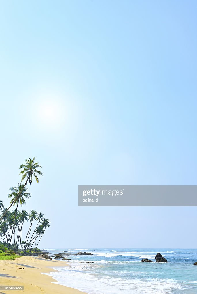 Tropical beach background : Stock Photo